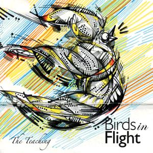 The Teaching - Birds In Flight