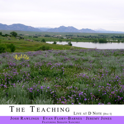 The Teaching - Live At The D Note