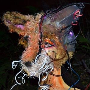 Night Grinder - Animus